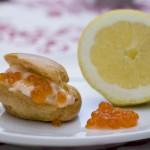 Choux saumon