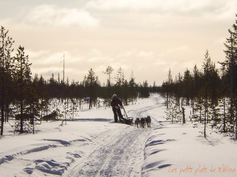 Laponie - Les Petits Plats de Mélina