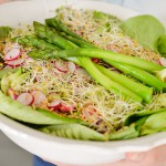Salade radis, alafalfa asperges - Les Petits Plats de Melina